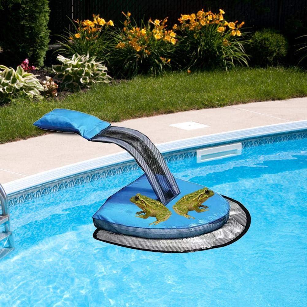 Bettying Rampa de rescate de animales para rutas de ventilación de piscina, piscina hinchable, pequeña rampa de fuego, dispositivo de ventilación para tortugas de ardilla: Amazon.es: Productos para mascotas