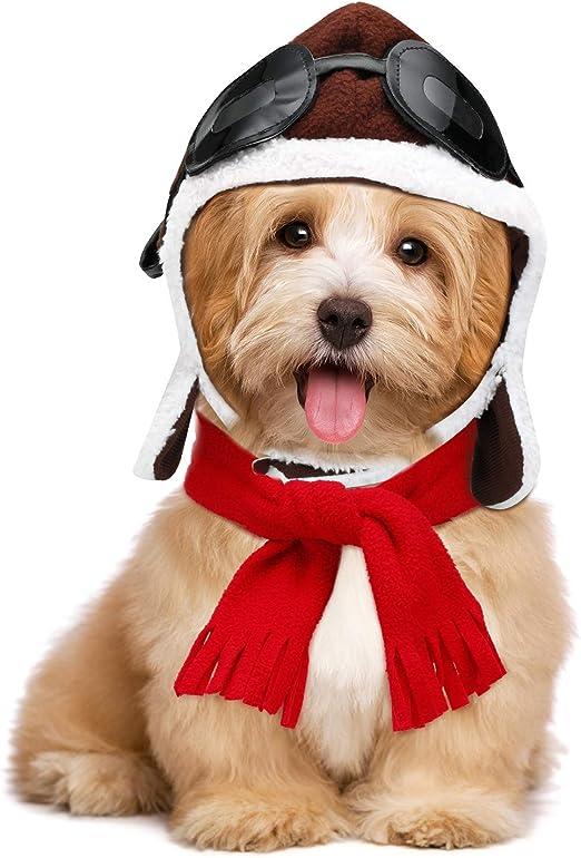 Syhood Disfraz de Halloween para Mascota, Bufanda para Perro ...