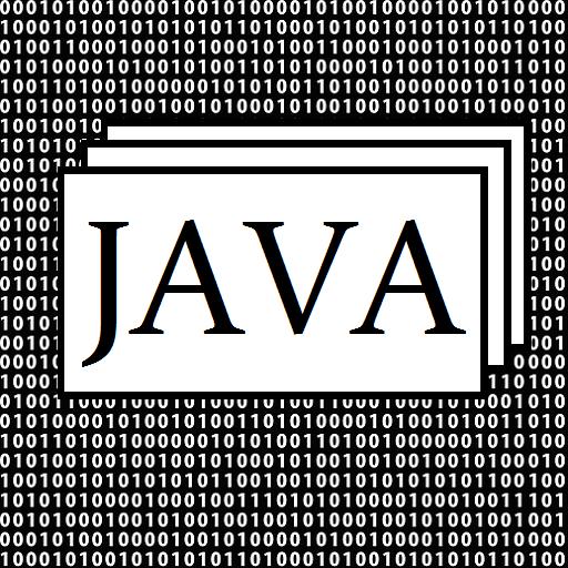 Computer Programmer - Learn JAVA Practice Flashcards: Amazon ...