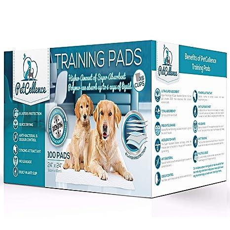 100 Empapadores Perros Cachorros Mascotas | 6 Capas Super Absorbentes Protegen Pisos Y Alfombras | Atrayente