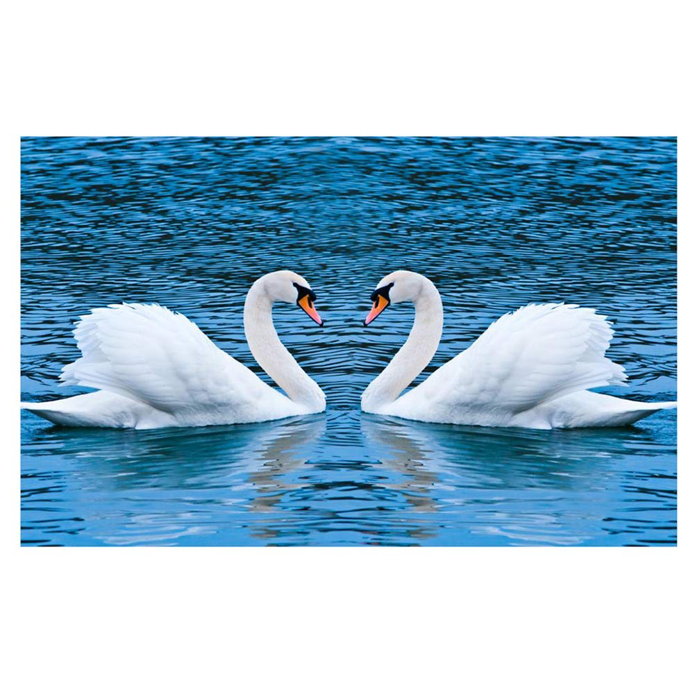 30X48CM Birds /White Swan /a Punto Croce con Diamante Rotondo/ DoSomethingInteresting 5D DIY Diamond Painting Kit di Ricamo//Full Resina Strass incollato Pittura//Mosaico/ /Birds/