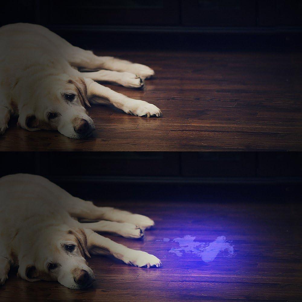 Vansky Flashlight Black Light 51 LED Blacklight Detector for Dog/Cat Urine,Dry Stains,Bed Bug, Matching with Pet Odor Eliminatornator, Eliminator, uv-2: Home Improvement