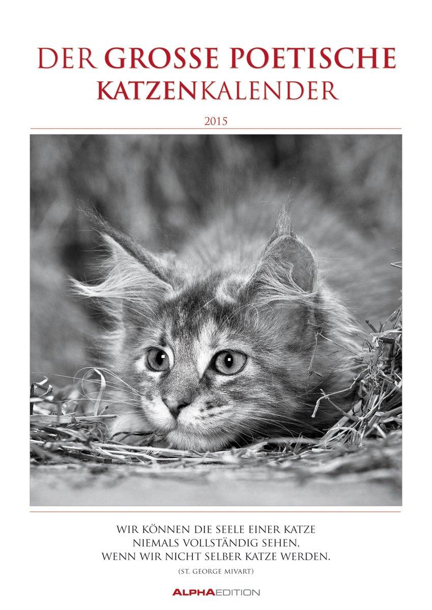 Der große poetische Katzenkalender 2015 - Literarischer Bildkalender A3 - mit Zitaten - schwarz/weiß - Tierkalender