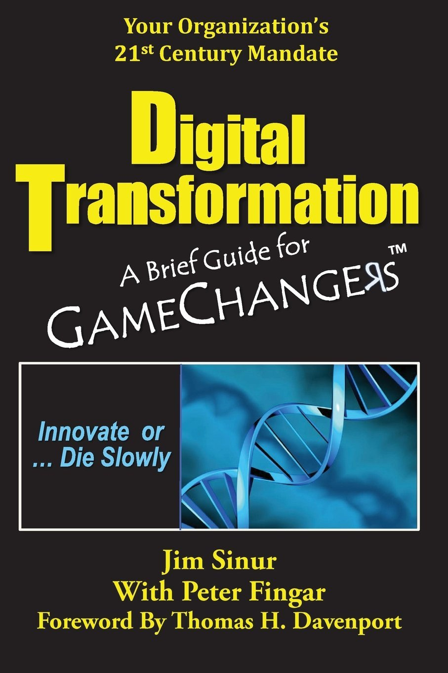 digital transformation a brief guide for game changers