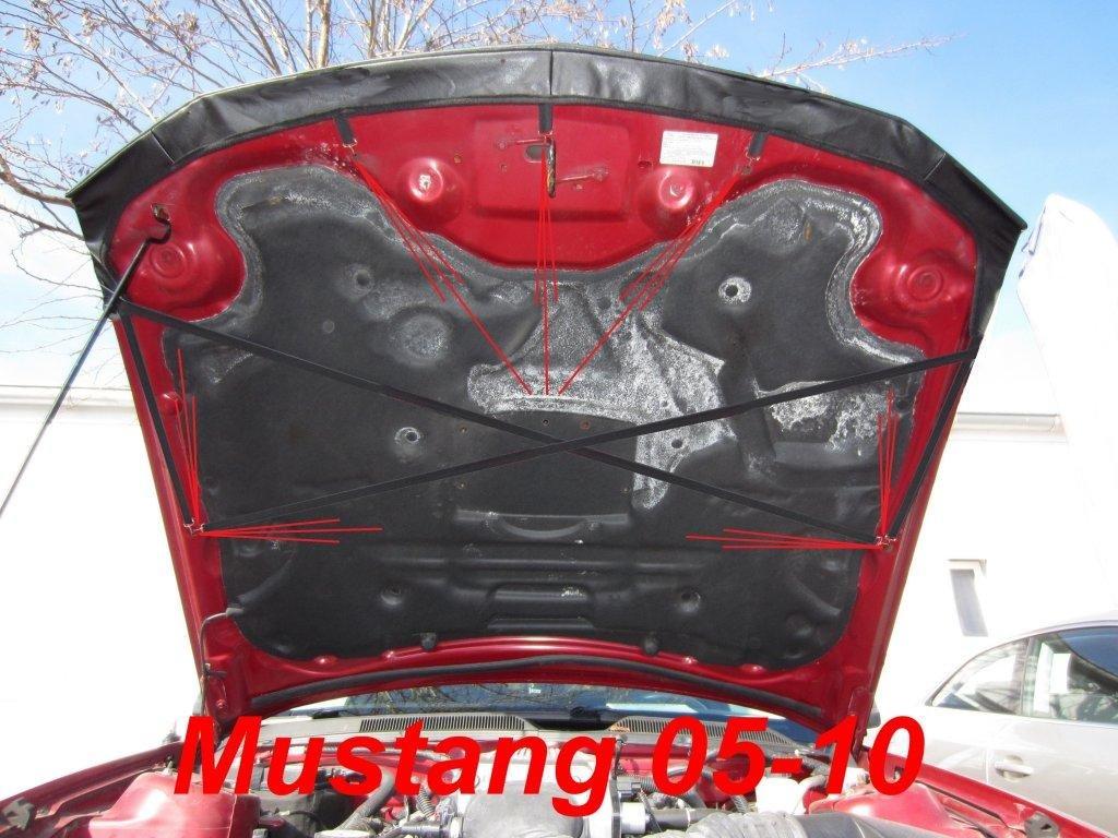 2005-2010 Haubenbra Steinschlagschutz Tuning Bonnet Bra AB-00883 CARBON OPTIK BRA f/ür Mustang Bj