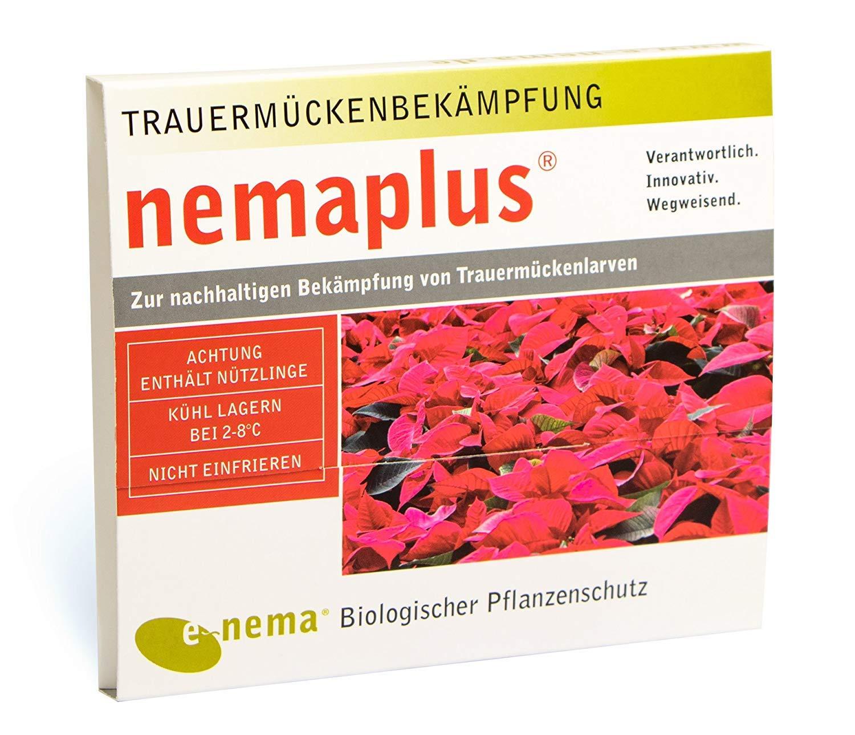 NemaPlus SF Nematoden Nützlinge zur Bekämpfung von Trauermücken 50 Mio für 100qm
