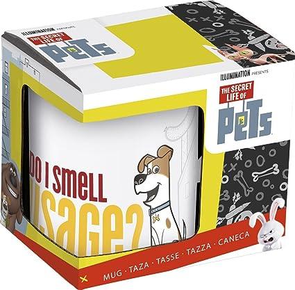 Amazon com: st294 Max & Duke Mug In Gift Box - The Secret Life Of