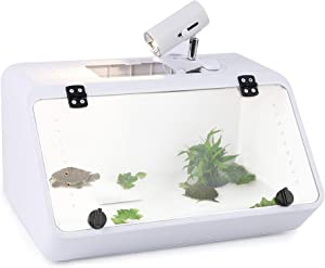 Large Reptile Tank – An Aquarium with a See-Through, Easy Access Front Panel Door   Habitat for Small Reptiles like Young Bearded Dragons, Lizards, Small Snakes and More  19''x10''x10'' with Food Tray