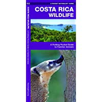 Costa Rica Wildlife: A Folding Pocket Guide to Familiar Animals