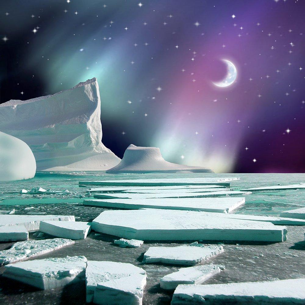 写真バックドロップ – The Icebreaker – 10 x 10 ft。 – 高品質シームレスなファブリック   B00OPJ5DOA