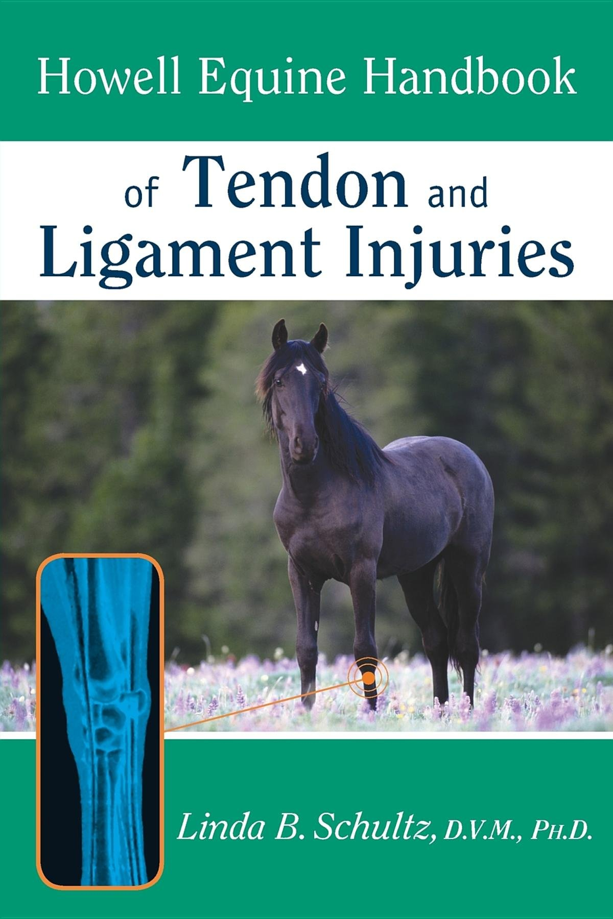 Howell Equine Handbook Of Tendon And Ligament Injuries Howell Equestrian Library Paperback Schultz Dvm Ph D Linda B 0785555880399 Amazon Com Books