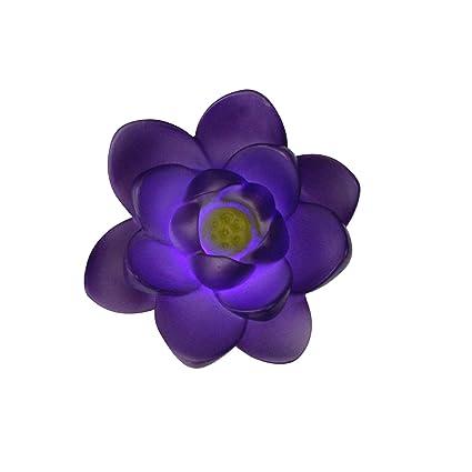 Amazon.com: Flor de color morado LED flotante 14