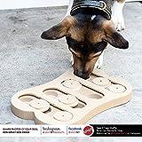 SPOT Ethical Pet Interactive Seek-A-Treat Shuffle