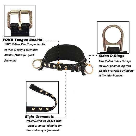 Wellforder - Cinturón con hebilla de lengüeta con almohadilla de ...