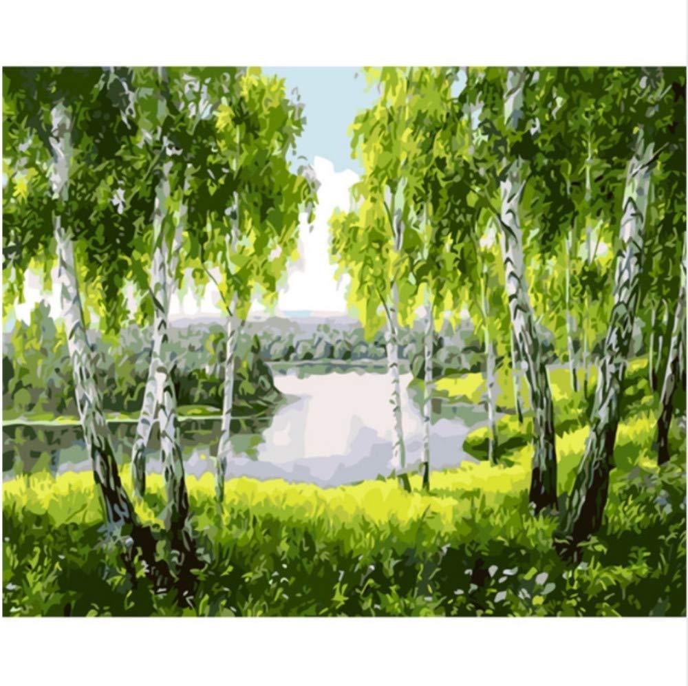 CZYYOU DIY Digital Malen Nach Nach Nach Zahlen Prairie Pappeln Ölgemälde Wandbild Kits Farbeing Wandkunst Bild Geschenk - Mit Rahmen - 40x50cm B07PT856X7   Wir haben von unseren Kunden Lob erhalten.  41fed5