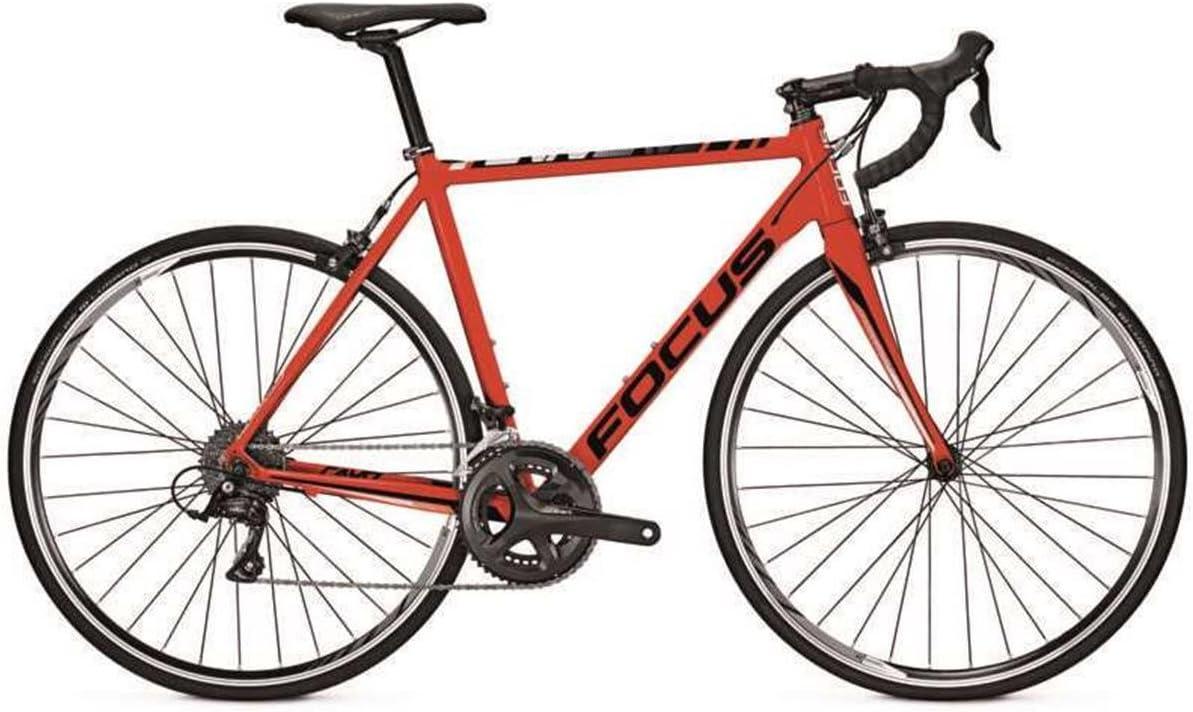 Focus Hombre Bicicleta 28 Pulgadas Bicicleta Rojo Cayo al Sora – 18 Marchas Circuito Cadena, Color Rojo, tamaño 60 cm: Amazon.es: Deportes y aire libre