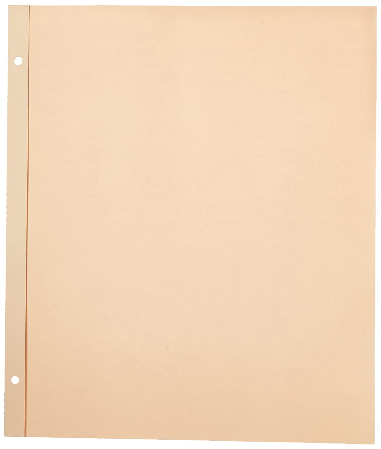 Pioneer 11 x 14-inch Post Bound Refill Pages, Pack of 25, Transparent SJ-50R