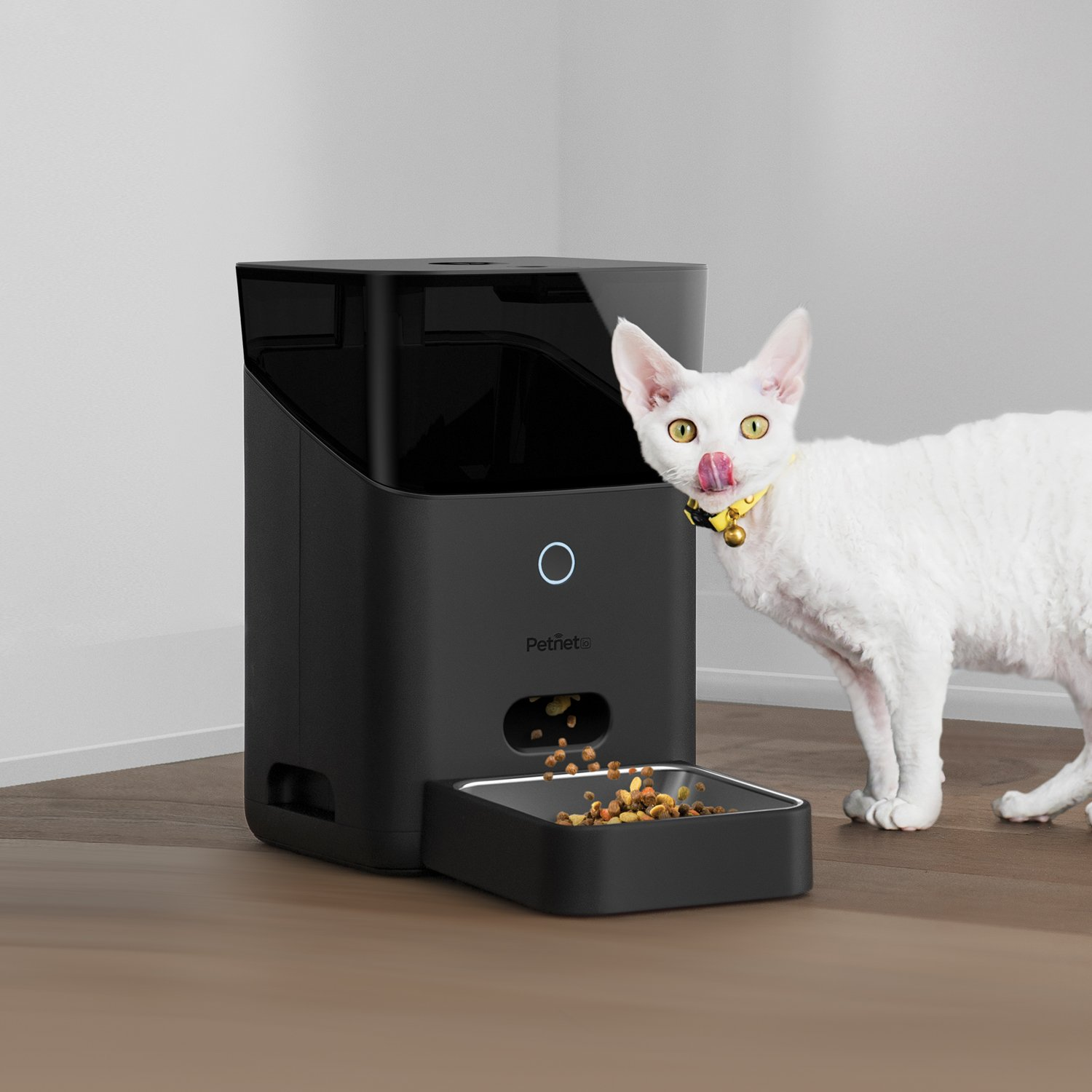 7 Best Smart Automatic Pet Feeder Camera with WiFi for 2019