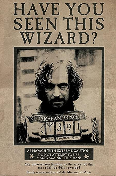 Harry Potter Maxi Poster 91,5 x 61 cm Hogwarts Express
