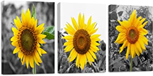 Emvency Canvas Wall Art for Living Room bathroom Bedroom, sunflower black and white Painting Canvas Prints Artwork Wall Decor framed wall art 12x16 inch/Piece, 3 Pieces Ready to Hang Office Home Decorations