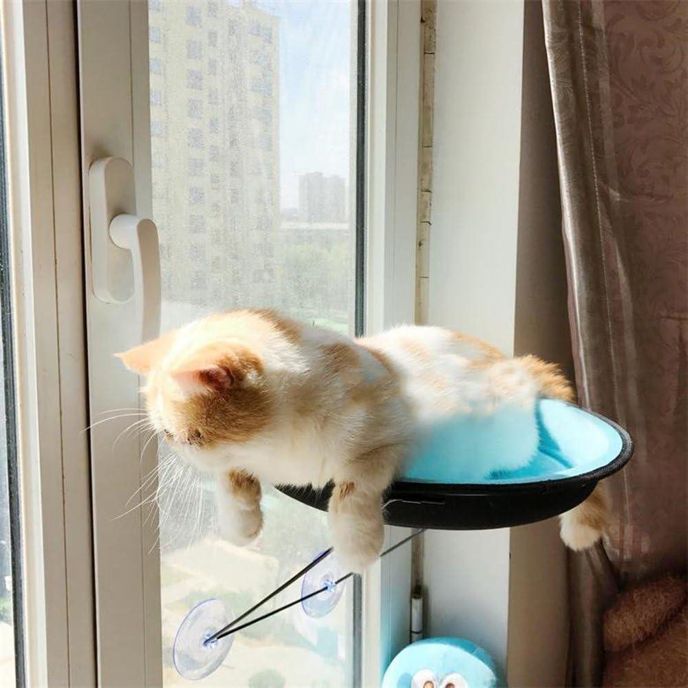 DOTPET Cat Window Perch Metal Cat Hammock Window Mounted Up to 26lbs Window Mounted Cat Bed /& Cat Sunny Seat 4 Suction Cup Mini Kitty Bed Climbing Tower Enjoy Comfortable Sunbath for Winter