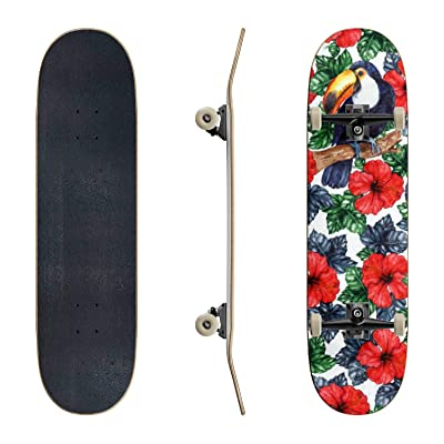 EFTOWEL Skateboards Watercolor Exotic Tropical Flower Hibiscus Animal Bird Toucan Seamless Classic Concave Skateboard Cool Stuff Teen Gifts Longboard Extreme Sports for Beginners and Professionals : Sports & Outdoors