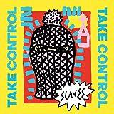 Take Control [VINYL]