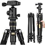 K&F Concept® TM2324 Kamerastativ Reisestativ Fotostativ Kamera Stativ für Canon Nikon Sony Spiegelreflexkamera aus Aluminium inkl. Kugelkopf Schnellwechselplatte und Stativtasche 156cm