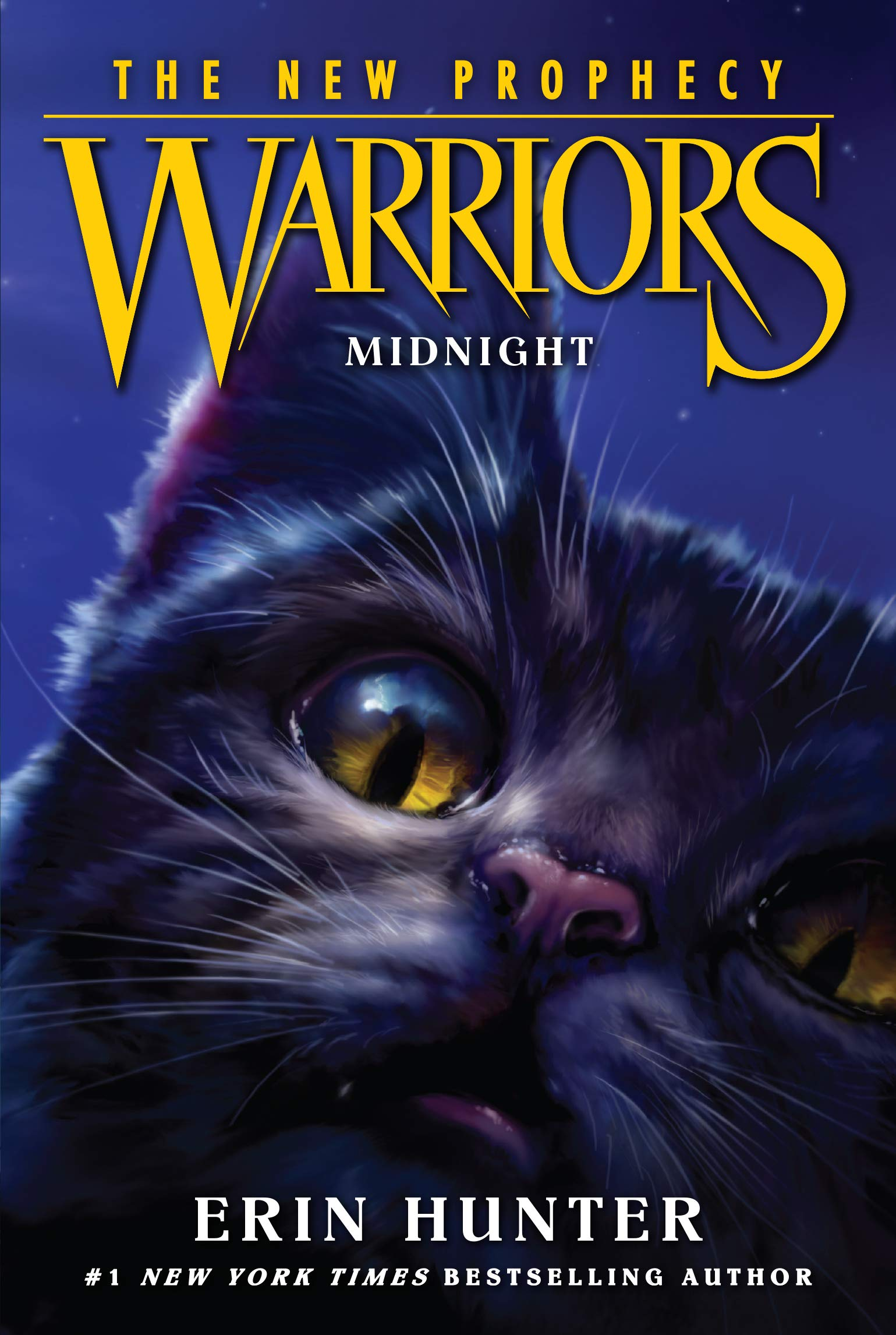 Warriors: The New Prophecy #1: Midnight: Erin Hunter, Dave