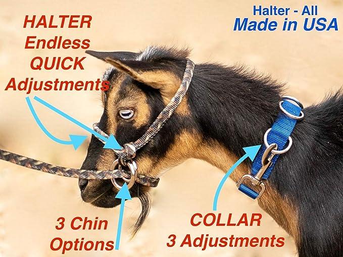 Halter-All MEDIUM 13 Patterns Sheep Livestock Figure 8 Details about  /Goat Halter Made in USA