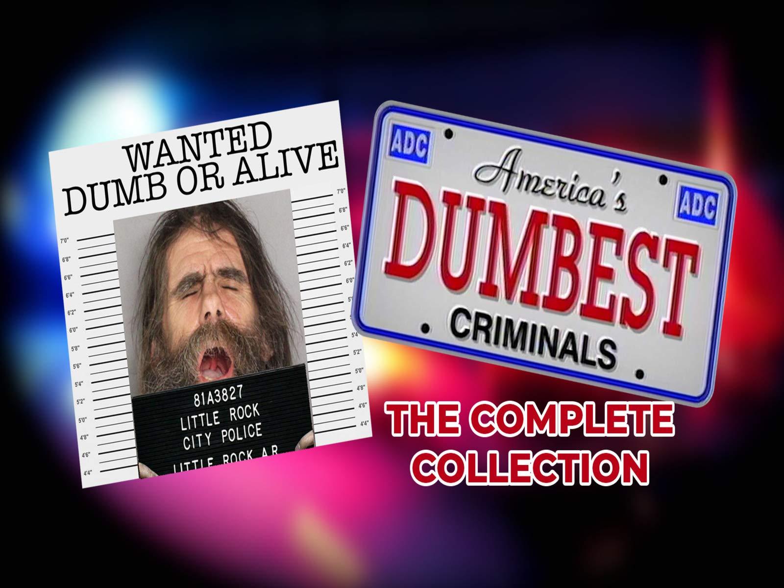 America's Dumbest Criminals - Season 1