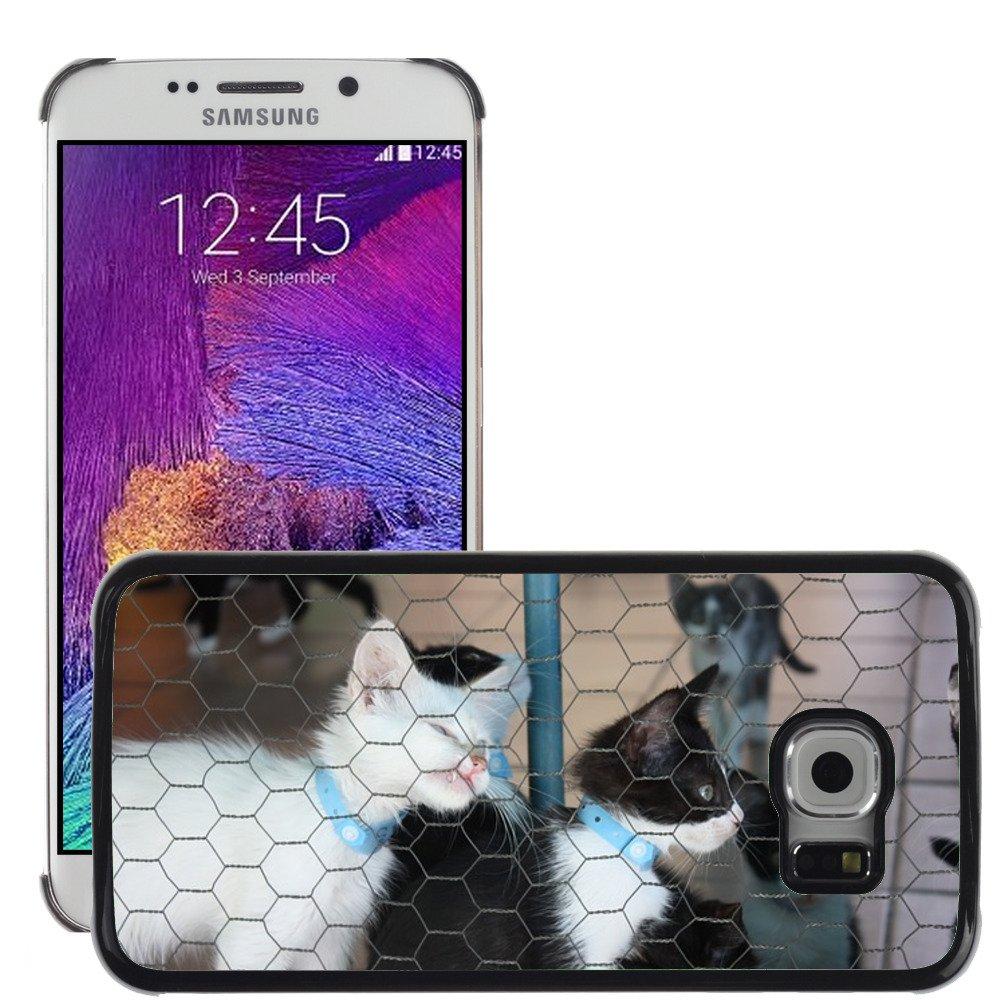 Just carcasa caliente estilo teléfono celular PC Funda rígida//m00139743 Caseta de gato gatos Feline Gato//Samsung Galaxy S6 Edge (no para S6): Amazon.es: ...