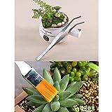 KNASI Bonsai Tree Tools Kit, Succulent Bonsai