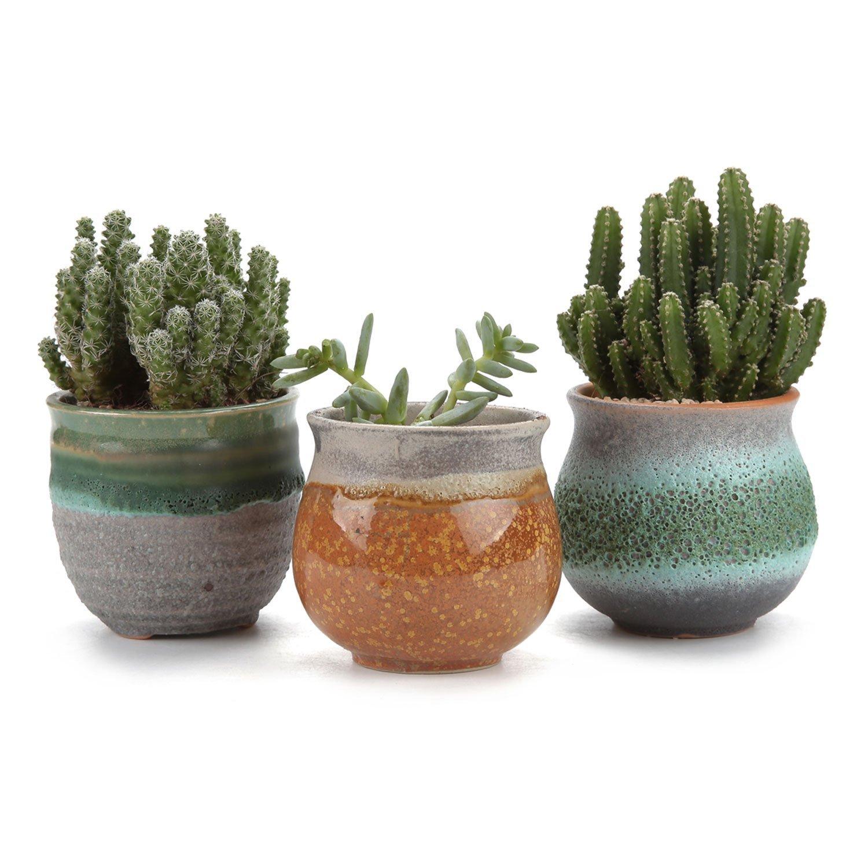 T4U 2.75 Inch Ceramic Summer Trio Succulent Plant Pot/Cactus Plant Pot Flower Pot/Container/Planter Green Package 1 Pack of 3