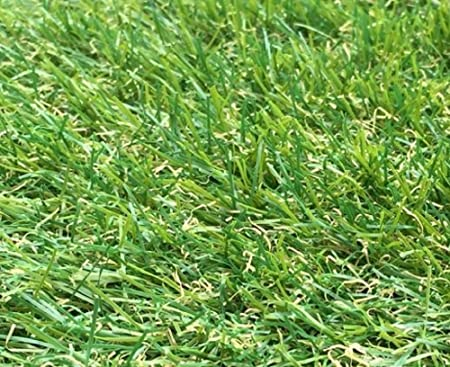 Natural /& Realistic Looking Astro Garden Lawn 300cm x 200cm 118 x 79 Inches 9 ft 10 Inch x 6 ft 5 Inch High Density Fake Turf 2m x 3m Berlin 26mm Pile Height Artificial Grass