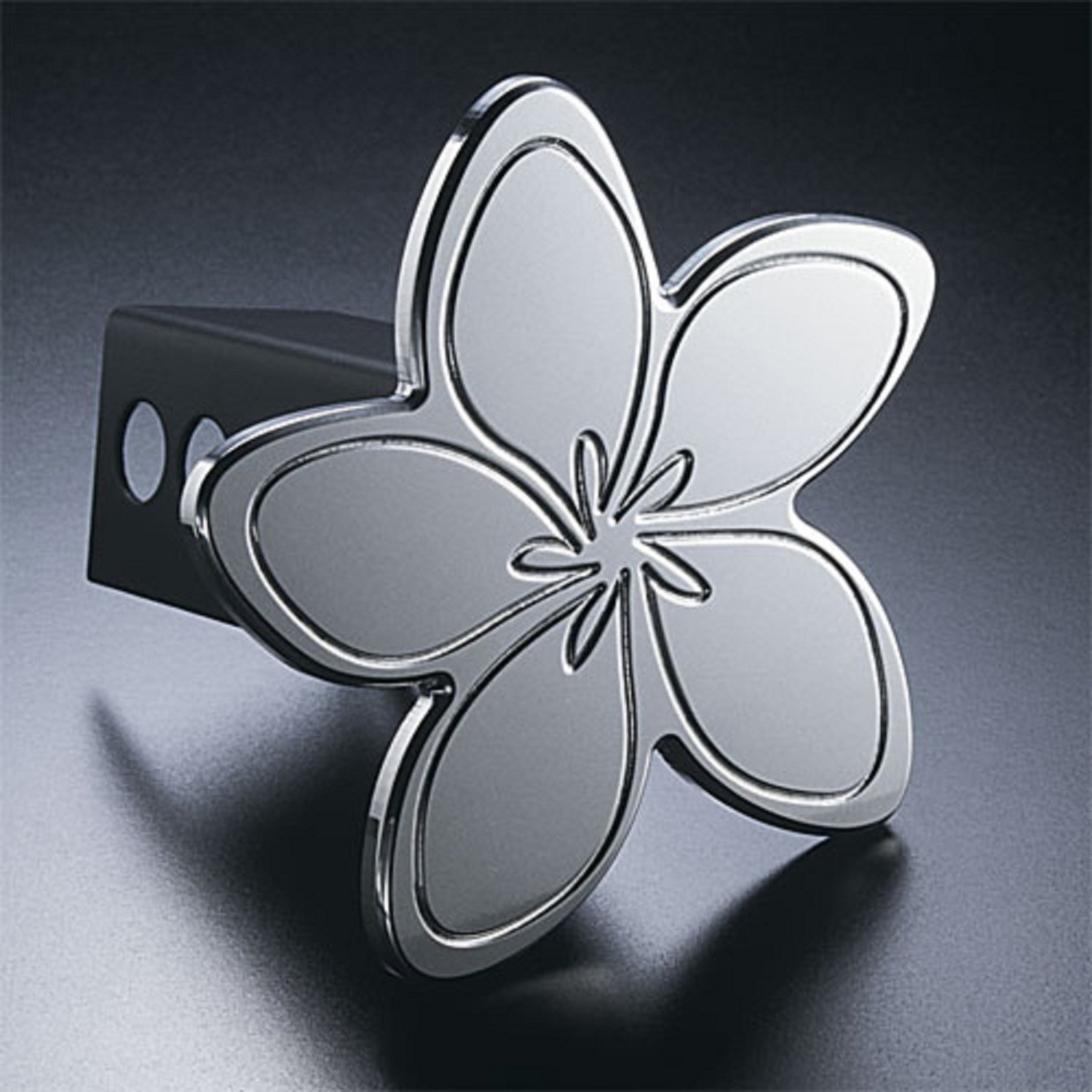 All Sales 1022 Hula-Flops Hitch Cover