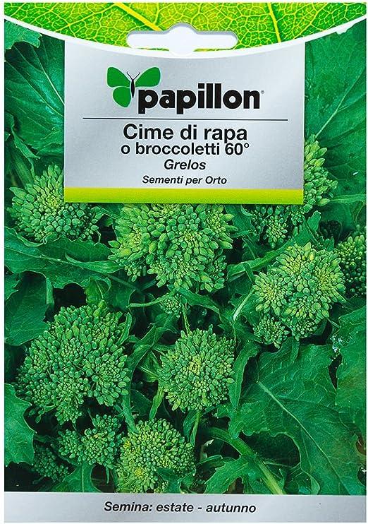 Semillas Grelo Brocoli (10 Gramos): Amazon.es: Jardín