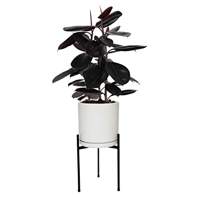 Matte Black Heavy Duty Metal Planter Stand for Plants Pot, Tripod Design, Medium for 8-10 Inch Planter Pot : Garden & Outdoor