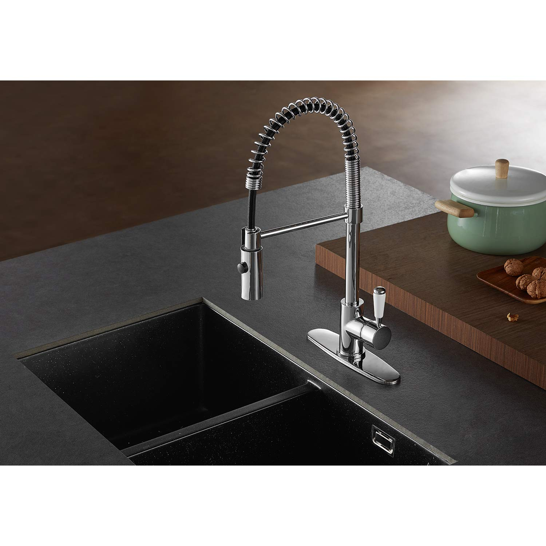 Kingston Brass LS8771DPL Paris Single-Handle Pull-Down Kitchen Faucet Polished Chrome