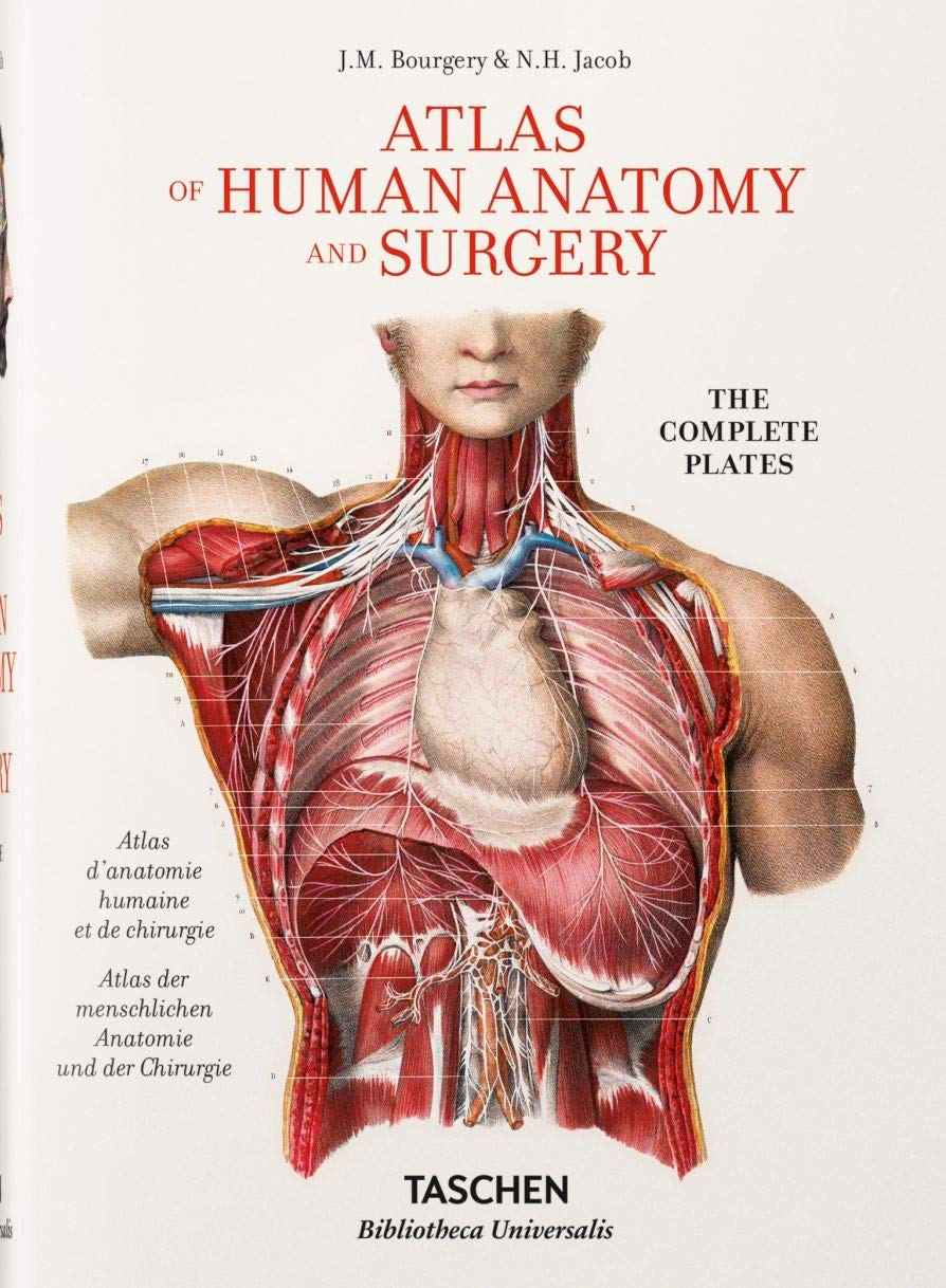 Bourgery. Atlas Of Human Anatomy And Surgery  Fp