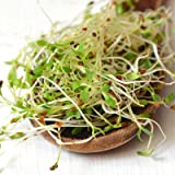 Certified Organic Alfalfa Sprouting Seed- 2.5 Lbs - Handy Pantry Brand - High Sprout Germination- Gardening, Growing Salad Sprouts, Planting, Food Storage & More