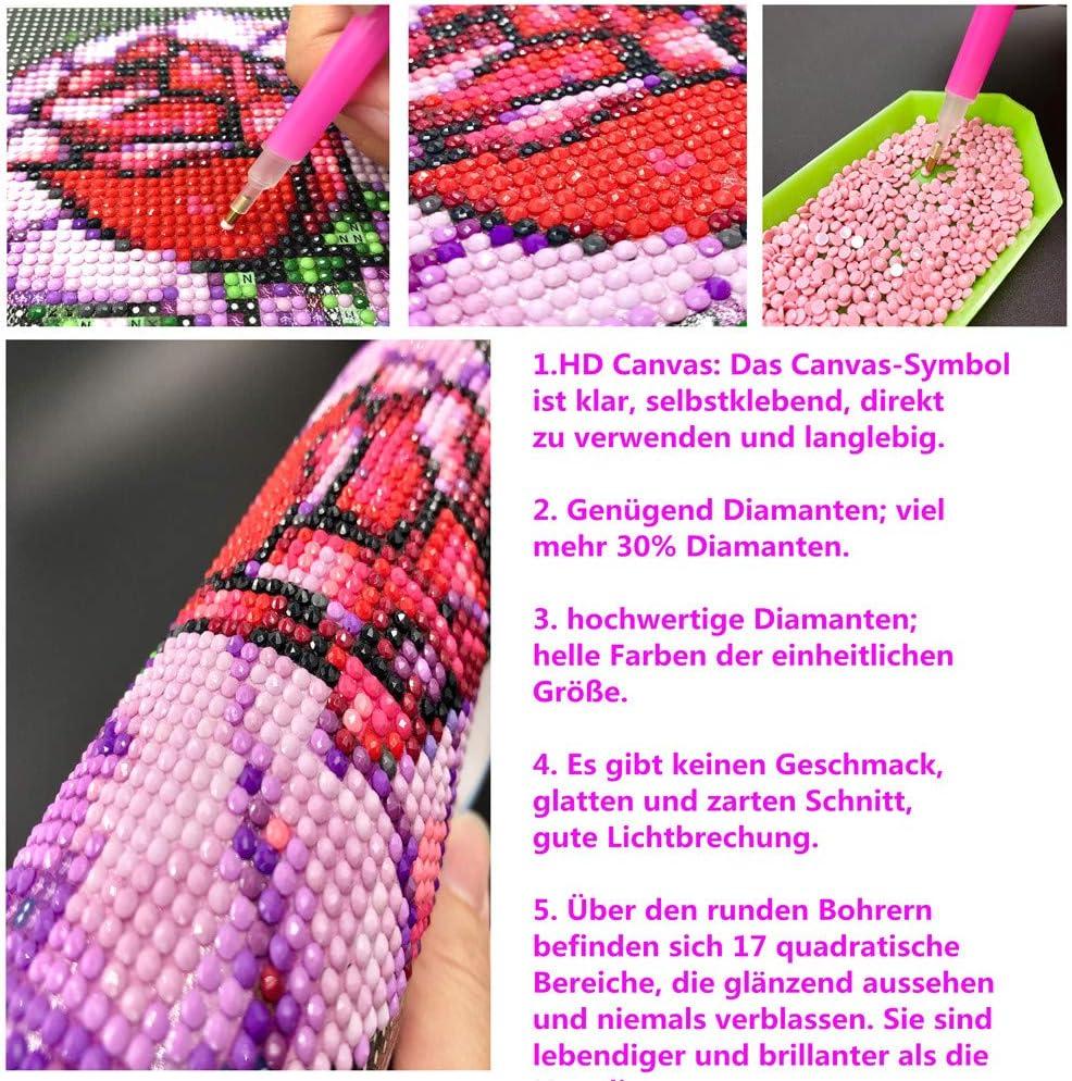 pittura con diamantini 5D Sunnay motivo: giardino con animali tela 40x30 cm Kit completo Diamond Painting