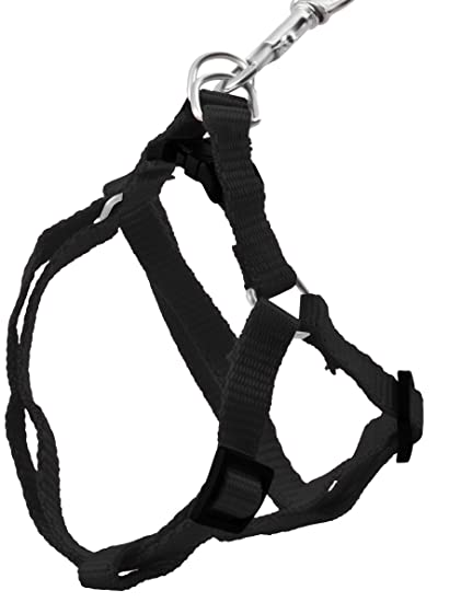 Iso Trade Leash Harness For A Cat A Dog