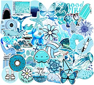 53 Pcs Street Fashion Sticker Decals for Laptops Cars Water Bottle Luggages Ipad Street Doodle Sticker Set Waterproof Sticker (Blue)