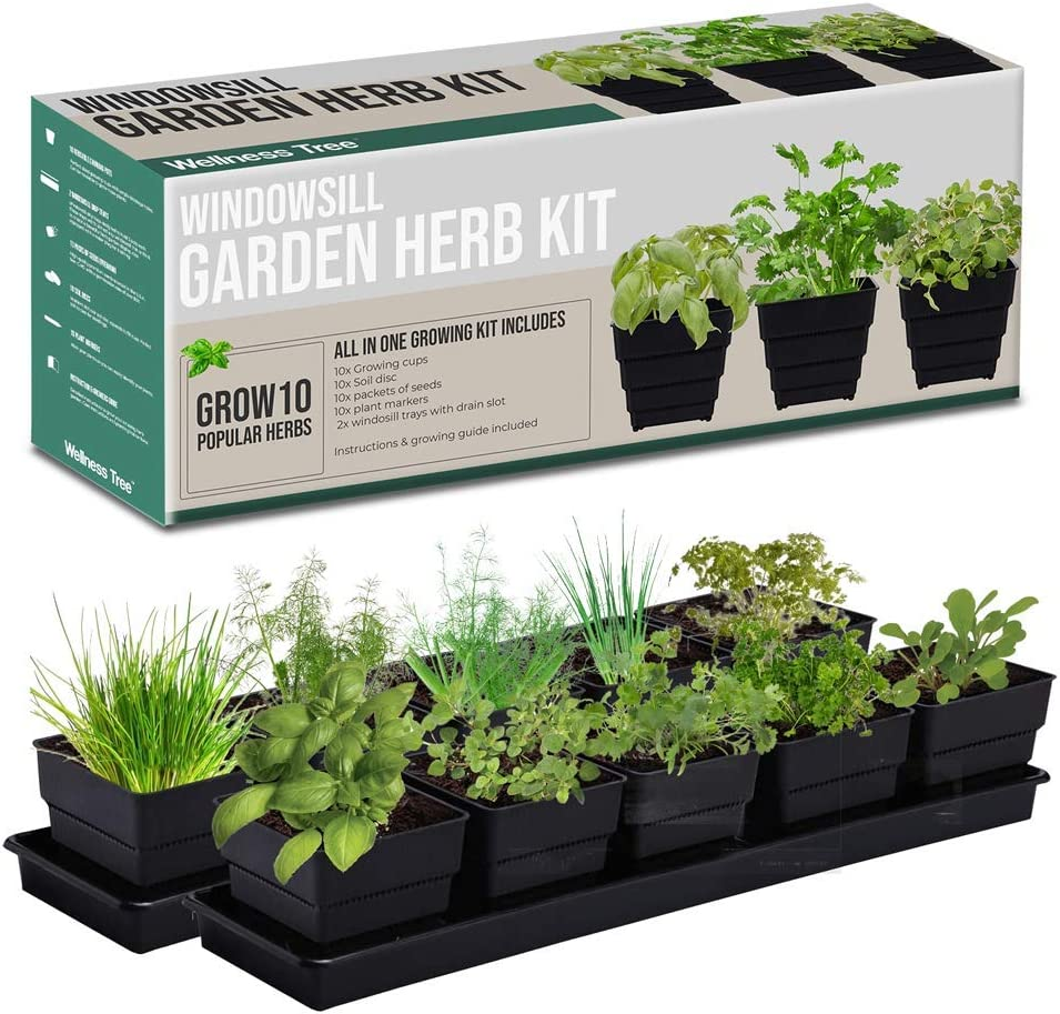 Window Garden Kit 10 Culinary Herbs - Indoor Organic Herb Growing Kit - Kitchen Apartment Windowsill Growing Starter Kit - Easily Grow 10 Herbs Plants from Seeds Gardening Gifts for Women & Men