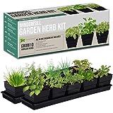 Window Garden Kit 10 Culinary Herbs - Indoor Organic Herb Growing Kit - Kitchen Apartment Windowsill Growing Starter Kit - Ea