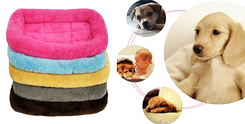 Letti A Baldacchino Per Cani : Xiaoyu inverno caldo e confortevole cane gatto da compagnia gatto