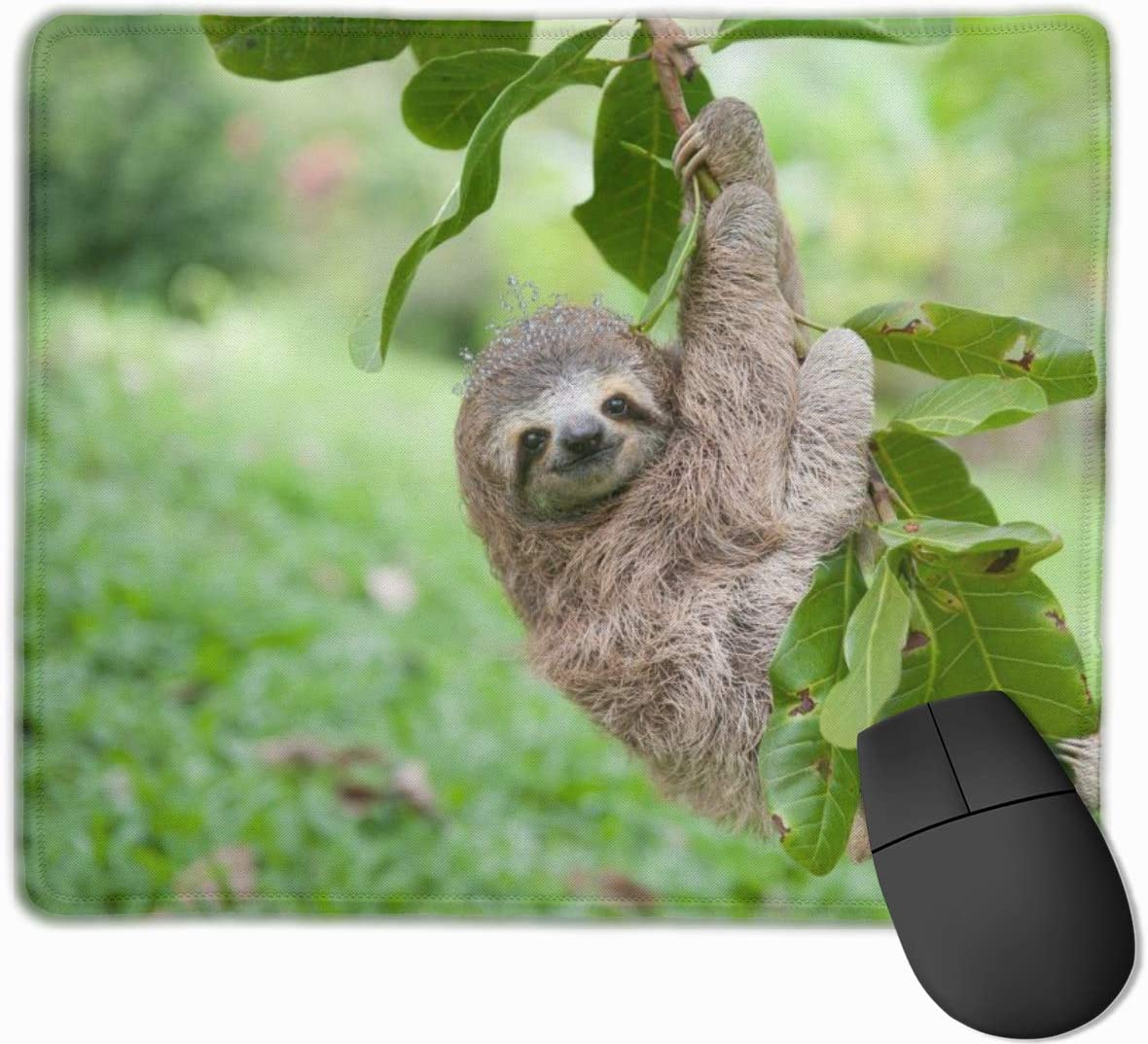 ManSanTuBaZhu Sloth Climbing Tree Non-Skid Personalized Designs Gaming Mouse Pad Black Cloth Rectangle Mousepad Art Natural Rubber Mouse Mat with Stitched Edges 9.811.8 Inch