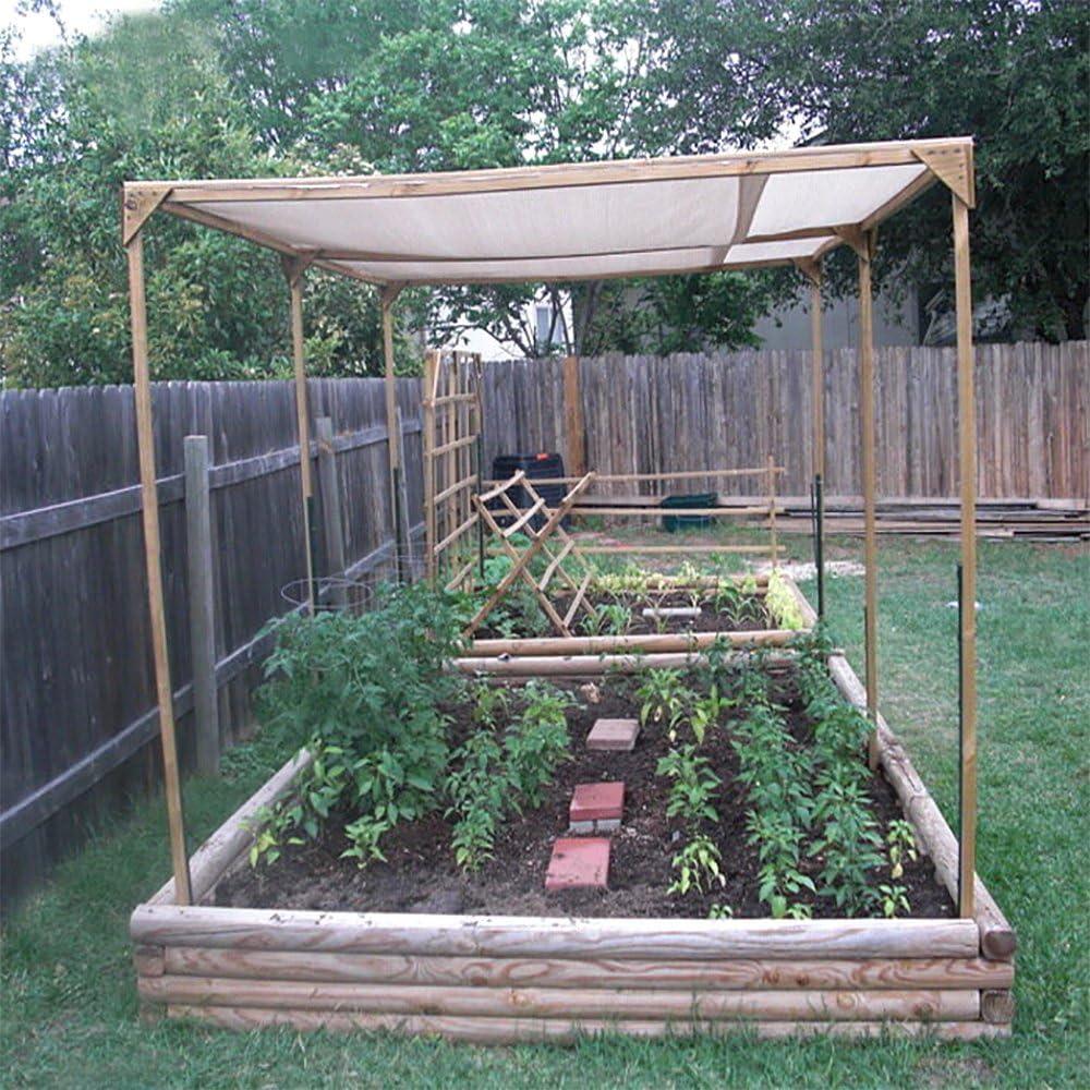 Originline - Pantallas de sol para plantas, pergola, patio, jardín ...