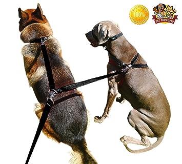 Mascota Suministros para correa de doble clip correa perro ...